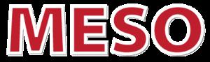 GAST 2018, Meso časopis